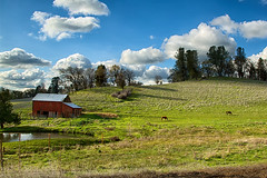 Bucolic (Sierra Springs Photography) Tags: horses foothills storm clouds barn landscape spring pond farm pasture sierras pleasantvalley outingdale