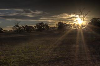 Somerton Road Sunrise (re-processed)  (_MG_7132_3_4_5_6_7)