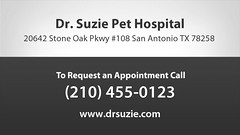 Welcome to Dr. Suzie Pet Hospital (Dr. Suzie Pet Hospital) Tags: veterinary veterinarian animals cats dogs surgery dentistry dentist boarding health pet pets clinic grooming bathing lasertherapy ultrasound dentalxray veterinarychiropractic