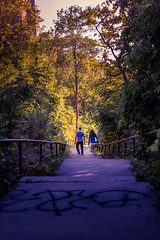 Couple (VBuckley.com) Tags: eastbanktrail trail milwakee sunset goldenhour summer july wisconsin green nature canon vincentbuckley stairs couple splittone vertical tree talltree