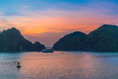 Ha Long Bay at Sunset (ReinierVanOorsouw) Tags: sonya7rii sonya7r sony reizen reiniervanoorsouw reiniernothere travel vietnam asia asya azie halong halongbay water lifeonwater sunset sundowner sunshine sun