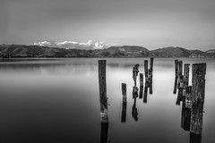 Tranquility (Mat Viv) Tags: canon canon760d canont6s 760d t6s canoneos760d canoneost6s sigma sigma1750mmf28 ndfilter longexposure wideangle blackandwhite monochrome landscape water lake smooth sky clouds sticks travel italy tuscany outdoors depthoffield
