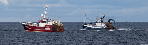 Trawlers Conquest BCK 364 and Transcend BF 61; Moray Firth, Scotland