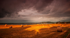 That's Me In The Middle (RonnieLMills - 2 Million Views...Thank you All :)) Tags: barley field hay bales portaferry road newtownards scrabo tower strangford lough dark cloudy skies strong sunlight
