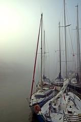 Erwachen - Awakening (Knarfs1) Tags: segeln sailing boat boot segelboot schiff harbour hafen port fog dust nebel mood