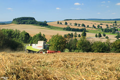 Harvest 2k16 come to an end   CLAAS LEXION 580 (martin_king.photo) Tags: claas claaslexion claaslexion580 wheat harvest 2016 summer yellow strong huge big machine clouds sky martin king photo agriculture machinery machines tschechische republik cloudyweather powerfull combine harvester landscape highlands czechlandscape snezne vysocina scenery tree harvesting hillylandscape hills fields