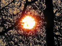 2016 9 2 Lanzo d'Intelvi, il sole all'alba (mario_ghezzi) Tags: lanzodintelvi lombardia italia intelvi valledintelvi nikon coolpix nikoncoolpix p7000 coolpixp7000 nikonp7000 nikoncoolpixp7000 marioghezzi noreflex 2016 sole alba alberi