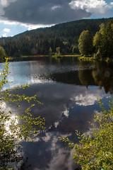 vosges t-9 (thibaudgerberon) Tags: etang lac paysage tourbire vosges lispach