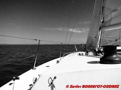 Brisbane - Sailing in Moreton Bay (soyouz) Tags: aus australie geo:lat=2744578300 geo:lon=15330363800 geotagged queensland wellingtonpoint brisbane bateau artpicture australiel