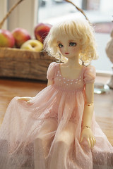 Early Autumn Doll Meet (Muri Muri (Aridea)) Tags: volks sdc may super dollfie cute msd ball jointed doll bjd abjd