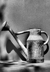 2742 (towbinaj) Tags: shadow wateringpot phoenixdesertbotanicalgarden