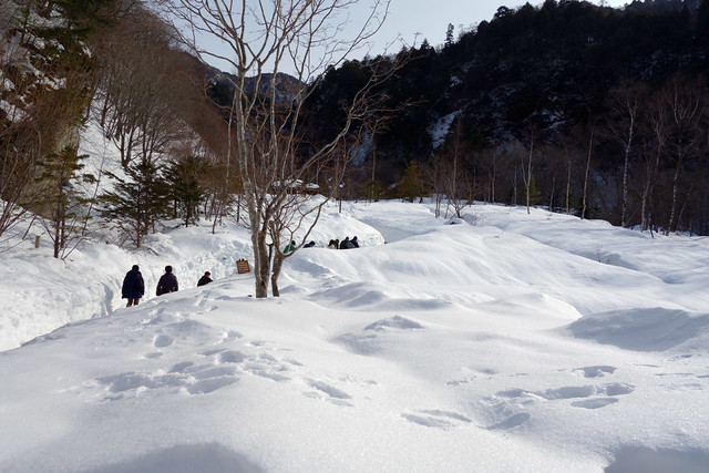 平湯大滝へ向かう雪道