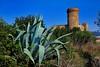 Torre Salvana (Jaume CP BCN) Tags: nikon catalonia catalunya cataluña d700 torresalvana coloniagüell mygearandme nikkor24120f4vr rememberthatmomentlevel1 rememberthatmomentlevel2 rememberthatmomentlevel3