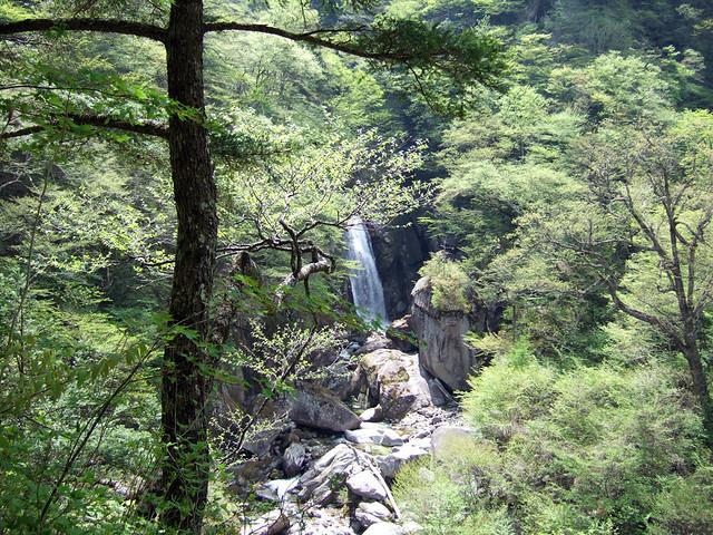 最後の目的地となる、不動滝が見えてきました。 尾白川渓谷