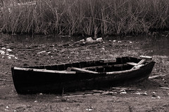 abandoned in a swamp (Monika Strataki) Tags: abandoned by sepia boat forgotten swamp monika photographed prespes strataki
