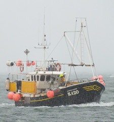 Deadliest Catch Orkney style (Craig Taylor - Orkney) Tags: bay boat fishing orkney crab vessel lobster blizzard kirkwall creel
