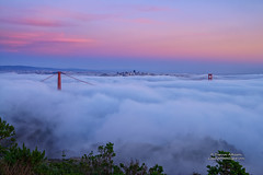 San Francisco Cotton Candy Sunset (Darvin Atkeson) Tags: sanfrancisco california city bridge sunset fog clouds landscape cityscape suspension foggy goldengatebridge goldengate pinksunset citybythebay darvin atkeson darv liquidmoonlightcom lynneal