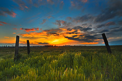 Three Rotton Fence Posts (17Millimeters) Tags: sunset landscape photography nikon tokina bakersfield oildale fenceposts kerncounty steverengers steverengersphotography