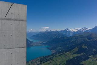 concrete & nature