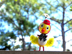 """Well Helllooooooooooo...."" (The Dolly Mama) Tags: bird nature hat toy spring houston chick missher judibird exploremarch262013"