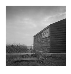 smoked fish (Nick Moys) Tags: beach suffolk du ilfordhp5 aldeburgh mamiyac220 smokery fishermansshed 55mmlens moerschfinol