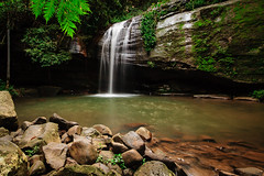 Oh the Serenity (Matthew Post) Tags: nature waterfall rainforest rocks post matthew australia waterfalls queensland sunshinecoast buderim serenityfalls matthewpost