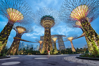 Under The Supertrees - Singapore