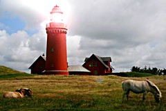 shining lighthouse (StefleiFotografie) Tags: light sky horse lighthouse nature grass denmark evening maritime bovbjergfyr flickrchallengegroup flickrchallengewinner