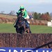 Rival D'Estruval favourite for Coral Scottish Grand National at Ayr Racecourse