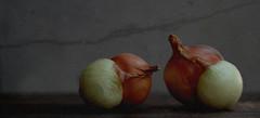 conjoined onions, conjoined onions (postbear) Tags: food texture kitchen vegetables yellow twins skin twin vegetable crack onions ingredients onion peel edible conjoined paver ingredient robfordasshole destroycraigslist robfordisanasshole robfordandstephenharperaredisgustingbigots robfordisalyingsackofshit allconservativesarefilth likeallbulliesrobfordisachickenshitcoward robfordisafraidofeverything robfordisastupidbitch marywalshformayororprimeminister thenewmapfunctionisterrible robfordhasneonazisforfriends foundoutreadingisdifficult robfordisadisgustingfuckingthief thenewuploaderisalsoterrible helpourformermayorisastupidclown formermayorrobfordlikescottaging call911theformermayorsbeatinghiswifeagain richwhiteconservativesbuyjusticeyetagain robfordsexuallyassaultswomen