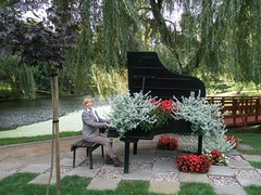 P9230048Piano&plant (maya_dragonfly) Tags: park people woman tree nature landscape ilovenature pond europe poland olympus goldenmix szafarnia autumn12
