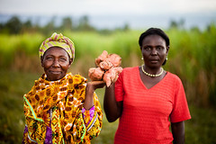 Kenyan Women Grow Nutritious Crops (USAID_IMAGES) Tags: africa usaid kenya agriculture eastafrica usagencyforinternationaldevelopment feedthefuture