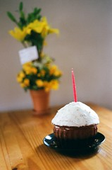 (thesadsundays) Tags: birthday flowers yellow cake 35mm candle cupcake tatiana