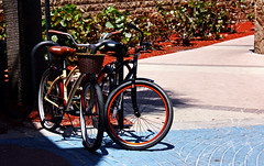 Bicycles (hollykl) Tags: florida daytonabeach vanagram
