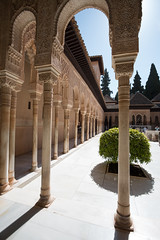 Courtyard of the Lions - I (RaminN) Tags: spain alhambra moorish granada patiodelosleones nasriddynasty بهوالسباع‎‎