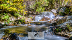 Riu Carboners (Acrocephalus Photography) Tags: catalunya esp hdr landscape mountain parcnaturaldelescapaleresdelteridelfreser pyrenees ripolls spain water autumn colors fall forest hiking naturallight naturalpark naturalworld nature naturephotography outdoors red river stream tree trees trekking waterfall setcases es