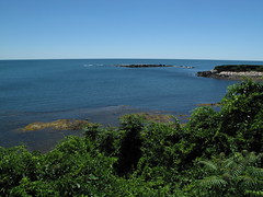 View from Marble House (ty law) Tags: newportri cottages vanderbilt thebreakers cliffwalk salveregina marblehouse rosecliff theelms servanttour bathroom gildedage robberbaron captainofindustry edwardian american grand grandiose flowers atlanticocean rhodeisland copper