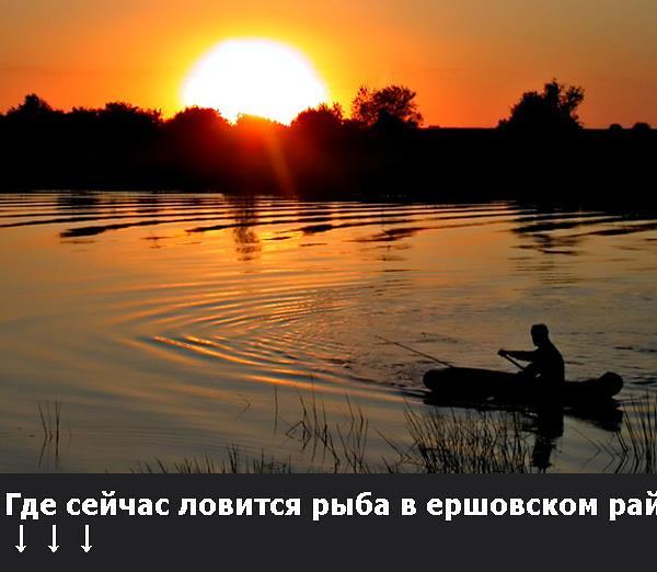 где ловится рыба в белгородской области