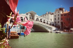 Venice Rialto Bridge (pfaffi1980) Tags: flower blume bridge bruecke venice venedig fluss kanal boat boot rialto