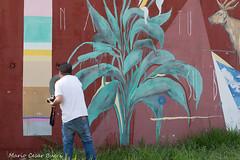 _DSC6047 (Mario C Bucci) Tags: saida fotografia pacheco paulo tellis mario bucci hugo shiraga fabio sideny roland grafites volu ii