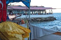 Saklanba oynayalm m? (Ahmet OYLUMLU) Tags: saklanba istanbul rumeli kavak sea deniz boaz bosphorus bridge turkey trkiye