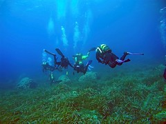 2016_0906_093221_006 (AAcero) Tags: buceo diving almera cabodegata isub