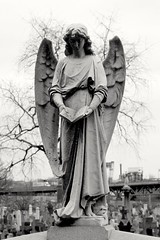 And chisel a marble word but all is lost if it's never heard. (Rommel Parada) Tags: firstcalvarycemetery queensny nyc newyork outerboroughs blackandwhite monochrome gravemarker angel sculpture stone statue eerie dark cemetery