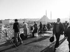 Galata Bridge (Bubah!) Tags: street travel vacation people bw white holiday black tourism turkey fishing fishermen istanbul mosque bosphorus
