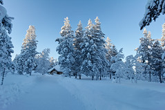 Fairytale house (dichiaras) Tags: winter snow fairytale finland lapland wonderland ivalo