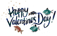 Happy Valentines Day! (Sophie Wainwright) Tags: sea fish love illustration day valentines happyvalentines happyvalentinesday