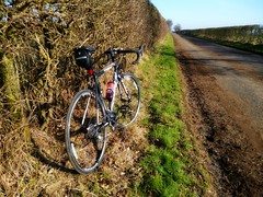 The Open Road (CAMRA Man ... (Back after summer , I hope)) Tags: road rural cycling hedge verge northcumbria