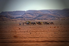 "Morocco day 4<br /><span style=""font-size:0.8em;"">Follow our road trip at --- > <a href=""http://www.bagpacktraveller.com"" rel=""nofollow"">www.bagpacktraveller.com</a></span> • <a style=""font-size:0.8em;"" href=""http://www.flickr.com/photos/58790610@N06/8490393906/"" target=""_blank"">View on Flickr</a>"