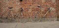 Legnano Roma 1947/1951 (coventryeagle48) Tags: original roma bicycle cambio decal bicicletta campagnolo derailleur parisroubaix cinelli legnano bicidepoca campagnolocorsa vintagecampagnolodecalsepocaantiguabicicletabrooksmagistronisimplexcampionedelmondo