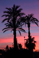 Sunset in Torre del Mar (juagar74) Tags: sunset mer night canon soleil lumiere 7d paysage espagne nuit plage malaga palmier torredelmar coucherdesoleilatardecer puestadelsollight